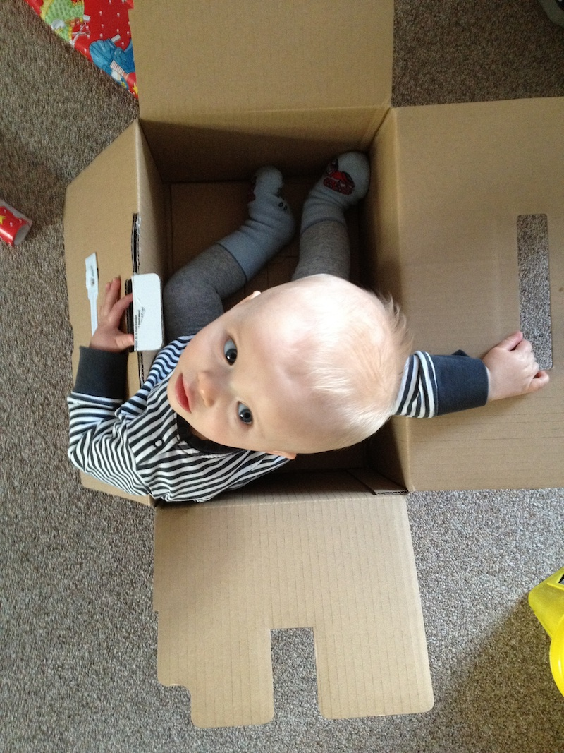 Linus im Karton